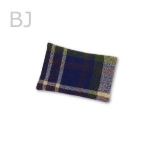 kiji-nuguitiecho-BJ