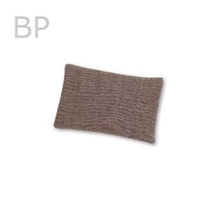 kiji-nuguitiecho-BP